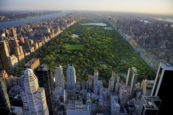 Central Park Shutterstock 155390825 Copy